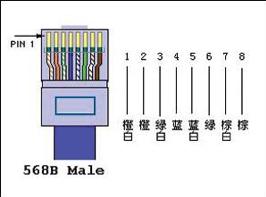 TMS网络布线说明